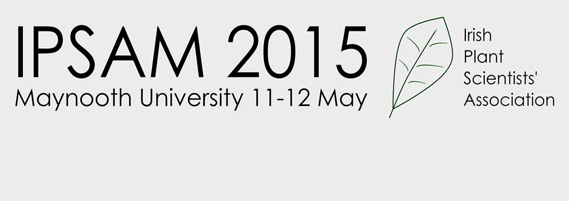 IPSAM - Logo - Maynooth University