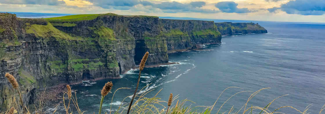 IO_Study Abroad in Ireland