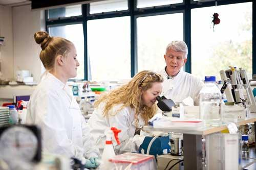 Communications & Marketing - Kevin Kavanagh lab with students biology 500 x 333 - Maynooth University
