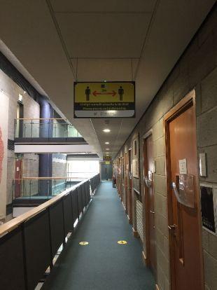 Psychology floor