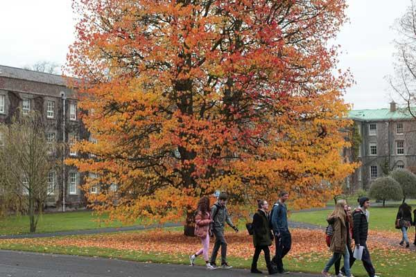 South Campus - Students at Graduation Tree - Maynooth University