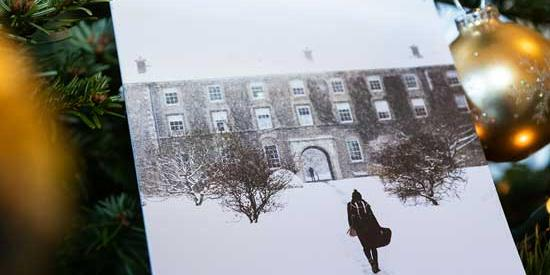 This image shows a Maynooth University Christmas Card, sitting in a christmas tree
