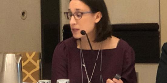 Ana Maria Sanchez Rodriguez presenting in Toronto