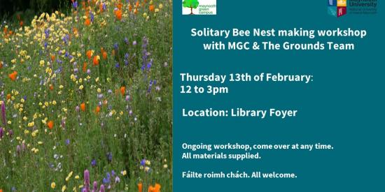 Solitary Bee Nesting Event